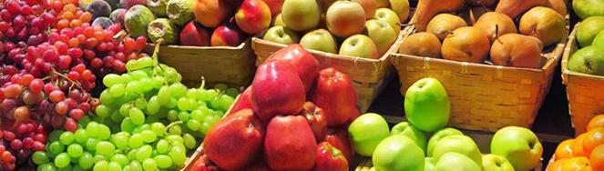 Alimentación saludable y ecológica