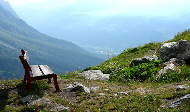 Cinco claves para un día en el monte