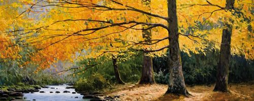 Los mejores hayedos para el otoño