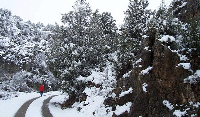Mandamientos para no sucumbir en la montaña